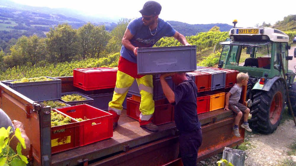 Cremant transport des caisses