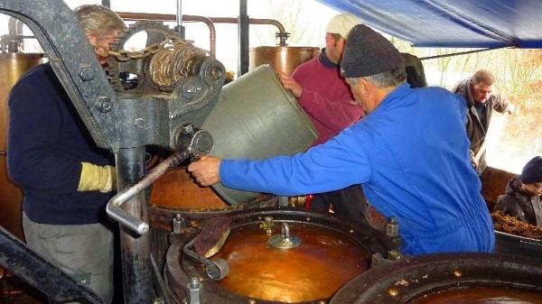 Distillation du marc de savoie