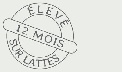 Logo Elevé 12 mois sur lattes