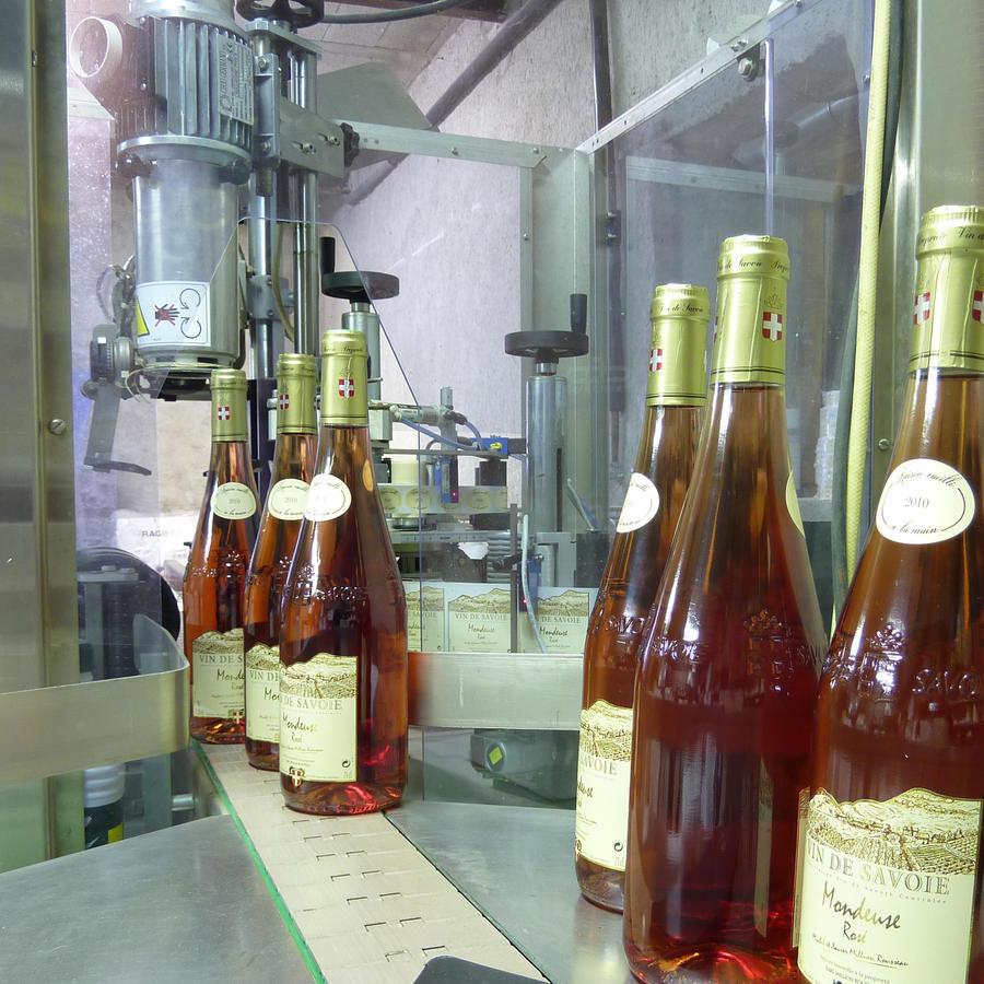 Etiquettage de bouteilles de vin de Savoie à la propriété