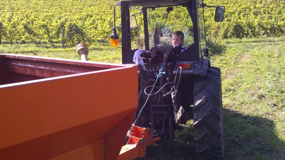 Vendanges monthoux 2014 45