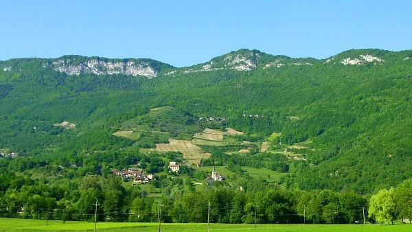 Vignoble de Monthoux en Savoie